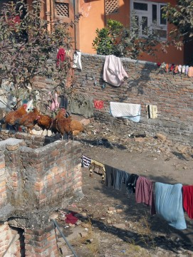 January 2012: Battisputali neighborhood, Kathmandu, Nepal