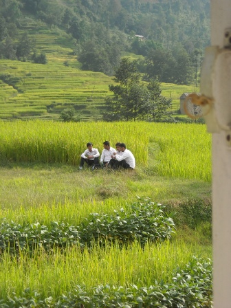 Teachers meet in a rice field behind their school in the Kathmandu Valley