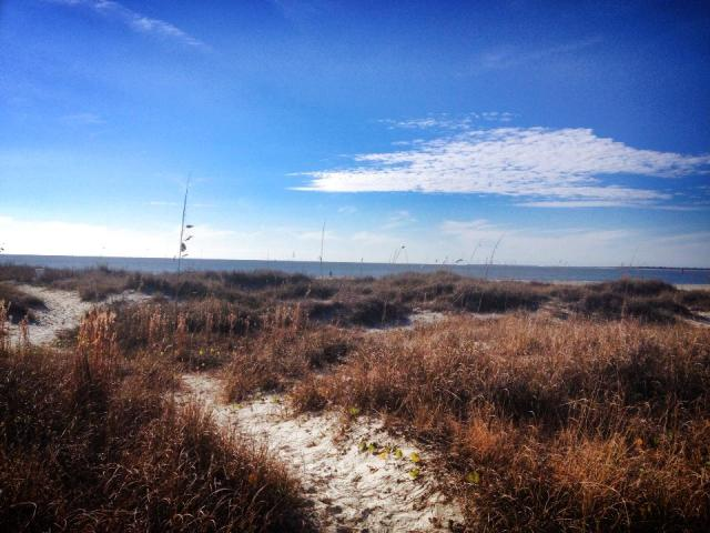 Happy New Year from Sullivan's Island, South Carolina!